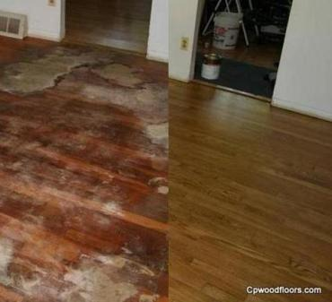 pet stained floor before after